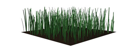 Plain Grass: 7253 points, 7276 faces