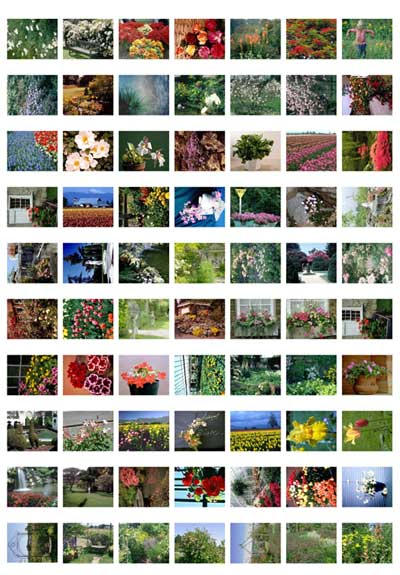 flower-fields-gardens-thumbs_page_3