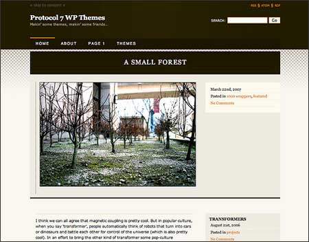 11-free-photo-blog-wordpress-theme-professor