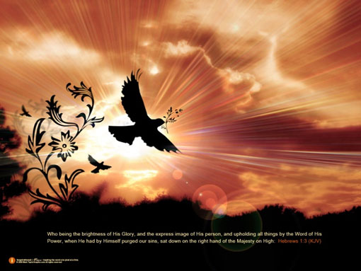 23. Dove from The Christian Wallpaper