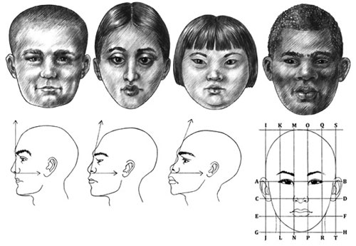 How to draw the human face 14