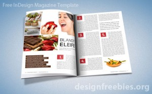 indesign magazine template mockup8 300x187jpg