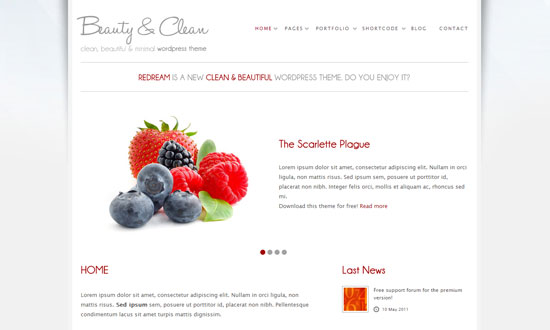 Best free wordpress theme for personal blog 12