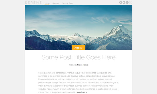 Best free WordPress theme for personal blogs 18