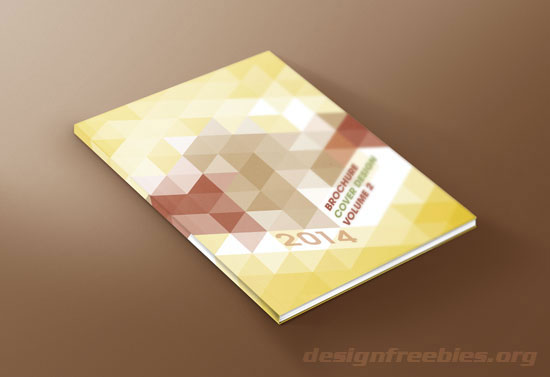 Free Illustrator Templates: Vector Brochure Cover Designs Vol. 1 no. 1