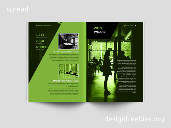 Free company profile InDesign template spread 2