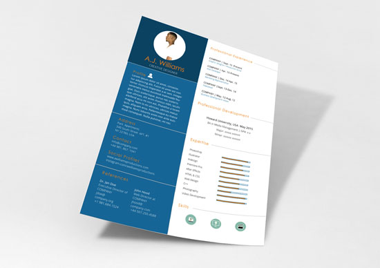 Free cv resume templates in word format 11