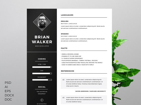 Free cv resume templates in word format 4