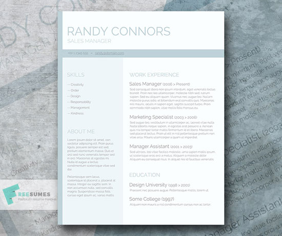 Free cv resume templates in word format 7
