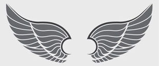 Collection of Free Elegant Vector Wings